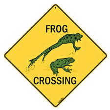 Picture of frog crossing sign.